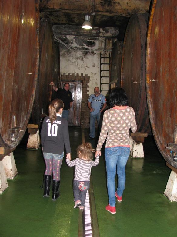 Walking between massive barrels of cider